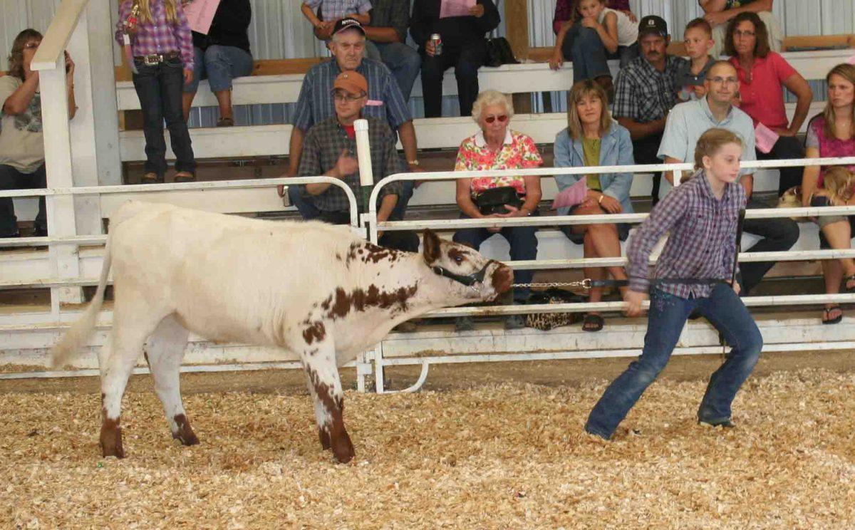 Becker County Fair 2020.4 H And Ffa Events